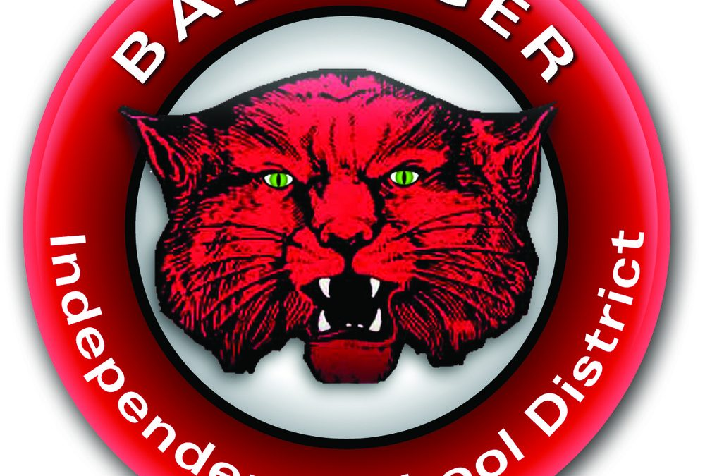 Ballinger Parent-Teacher Committee Meeting wrap-up, '20-'21 School year taking shape