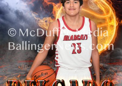 bball-posters-7